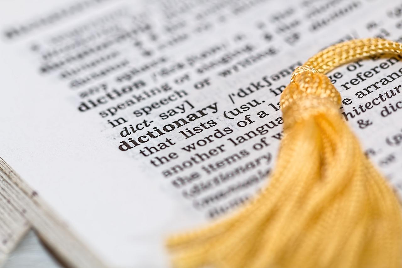 【日英辞書VS英英辞書】結局どっちを使うべきなのかを徹底解説