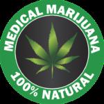 【カナダで大麻合法化】知られざるその理由と文化の違い