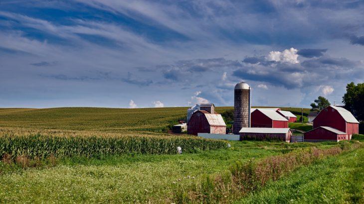 トランプ政権の移民政策⇨アメリカ農業の人手不足が深刻な件