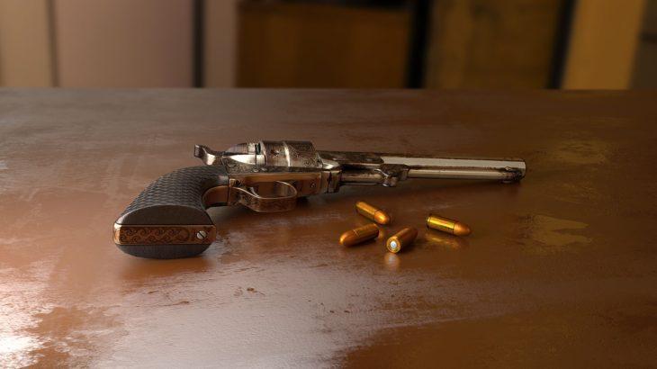 【数字で見る】アメリカ、異常な銃社会の実態10選